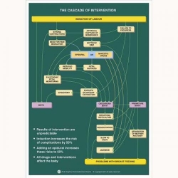 CASCADE OF INTERVENTION CHART