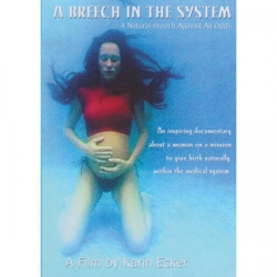 A BREECH IN THE SYSTEM DVD PAL